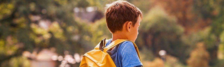 Bullying: especialistas respondieron preguntas sobre cómo abordarlo