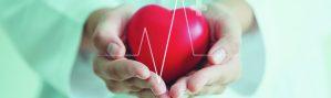 Protege a tu corazón del colesterol alto